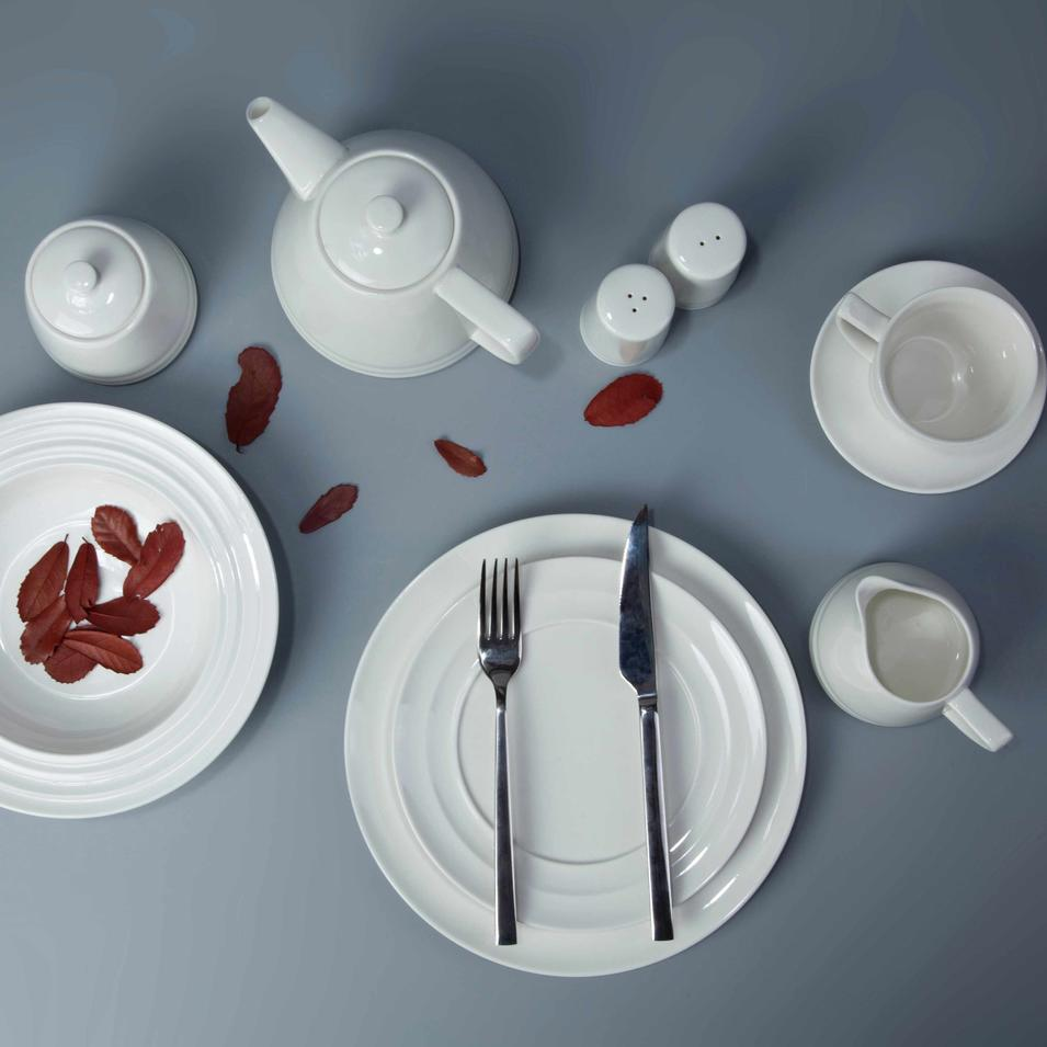 11 piece white ceramic restaurant dinnerware set - TW28