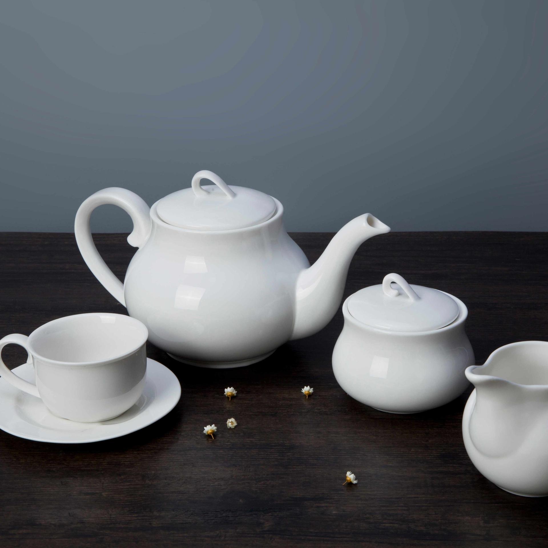 10 piece restaurant white ceramic dinnerware set - TW22